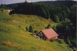 Ferienhaus im Schwarzwald - Alleinlage
